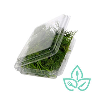 Rectangular compostable clear plastic herb tray