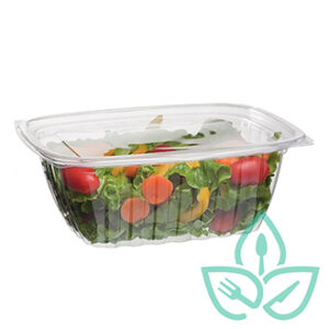 Rectangular compostable clear plastic food containers