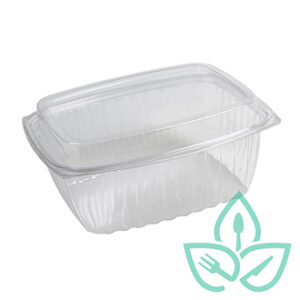 compostable plastic clear container rectangular